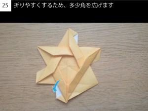 star225