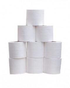 toilet-roll-220415_640-239x300
