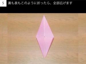 tsubaki05