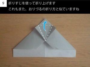 plane109