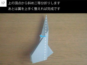 plane117