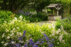 flower-garden_19-135251-300x199