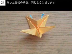 star23