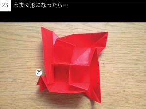 box323
