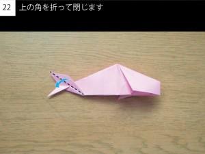fish22