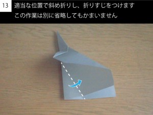 plane113